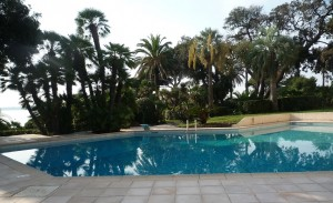 2 pices en vente Cannes Palm Beach